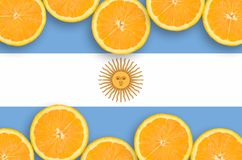 Argentina flag in citrus fruit slices horizontal frame. Argentina flag in horizontal frame of orange citrus fruit slices. Concept of growing as well as import vector illustration