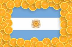 Argentina flag in fresh citrus fruit slices frame. Argentina flag in frame of orange citrus fruit slices. Concept of growing as well as import and export of vector illustration