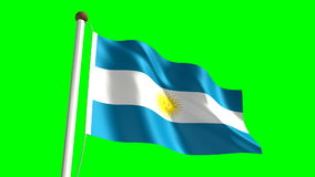 Argentina flag stock footage