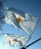 argentina flagga Royaltyfri Fotografi