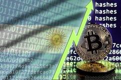 Argentina flagga och stigande grön pil på bitcoin som bryter skärmen och två fysiska guld- bitcoins vektor illustrationer