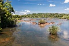 argentina iguassu Brazylijskie rzeki Fotografia Stock