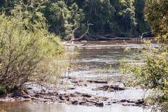 argentina iguassu Brazylijskie rzeki Zdjęcie Stock
