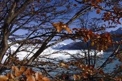 argentina lodowa Moreno perito Zdjęcia Royalty Free