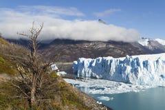 argentina lodowa Moreno perito Zdjęcie Royalty Free