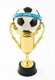 Argentina one of the best soccer teams in the worl Royalty Free Stock Photography