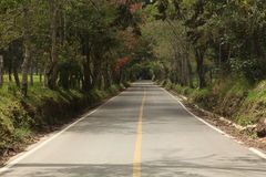Argentina road. A small road runs to patagonia Royalty Free Stock Images