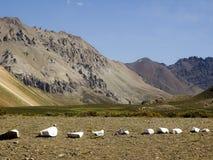 Argentinare - berg för Los Anderna Arkivbilder