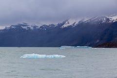 Argentine湖冰块 库存图片