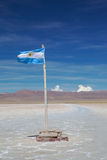 Argentine flag Stock Image