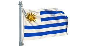 Argentine flag waving on white background, animation. 3D rendering stock footage