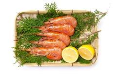 Argentine red shrimp Royalty Free Stock Photos