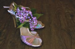 Argentine tango stilettos and lilac flower on dark wood. En floor, text space Stock Photo