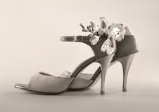 Argentine tango stilettos in sepia Royalty Free Stock Photography