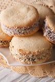 Argentinean dessert: cookies alfajores on a plate macro. Vertica Stock Image