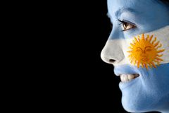 Argentinean flag portrait Stock Images