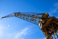 Argentinian crane Royalty Free Stock Image