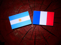 Argentinian flag with French flag on a tree stump isolated Stock Image