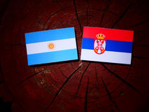 Argentinian flag with Serbian flag on a tree stump isolated Stock Photography
