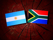 Argentinian flag with South African flag on a tree stump isolate Stock Images