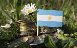 Argentinian flag with stack of money coins with grass Stock Image