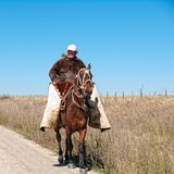 Argentinian gaucho. On riding horse Stock Images
