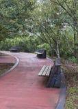 Argentinian Iguazu Park Empty Road Royalty Free Stock Images