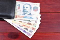 Argentinian money in the wallet Stock Images