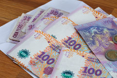 Argentinian money / pesos. View of the Argentinian money / pesos Royalty Free Stock Photography
