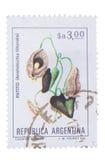 ARGENTINIEN - CIRCA 1983: ein Stempel gedruckt in den Shows C Lizenzfreie Stockfotografie