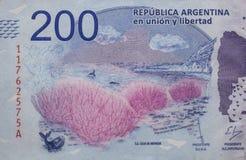 Argentinien-Geld lizenzfreie stockbilder