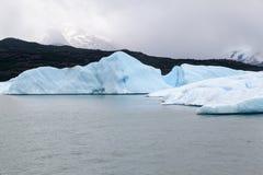 Argentino Lake Foto de Stock Royalty Free