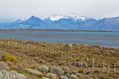 Argentino Lake El Calafate Argentina Stock Photos