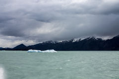 Argentino Lake Ice Blocks Patagonia Royalty Free Stock Image