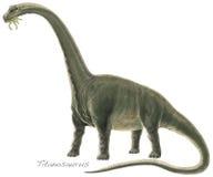 Argentinosaurus di Titanosaur Fotografia Stock Libera da Diritti