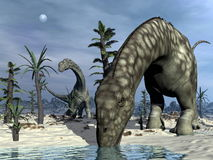 Argentinosaurus dinosaur drinking - 3D render Stock Photo