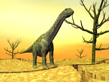 Argentinosaurus dinosaur in the wild Royalty Free Stock Image