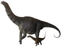 Argentinosaurus et profil juvénile Images stock