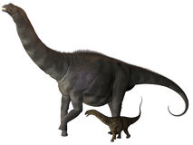 Argentinosaurus and Juvenile Profile. Argentinosaurus was a titanosaur sauropod dinosaur from the Cretaceous epoch in Argentina Stock Images