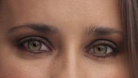 Argentyńska kobieta z bławymi zielonymi oczami w studiu zbiory wideo