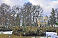 arges curtea de monastery Στοκ Εικόνες
