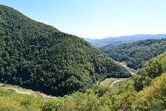 Arges gorge Royalty Free Stock Photo