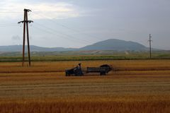 Argicuture, Roumanie, tracteur Photo stock