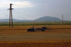 Argicuture Rumänien, traktor Arkivfoto