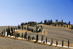 Argila de Siennese Foto de Stock Royalty Free