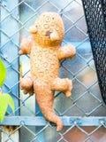 Argila do lagarto da boneca na cerca de fio Imagens de Stock