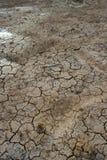 A argila rachada mmoeu no lago seco Fotografia de Stock