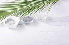Argile cosm?tique bleu et noir et blanc et feuille exotique verte Concept des traitements de beaut? L'espace vide pour votre conc photographie stock
