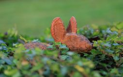 Argile de lapin au milieu du lierre. Photographie stock libre de droits