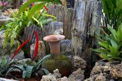 Argilla di vaso nel giardino Fotografia Stock Libera da Diritti